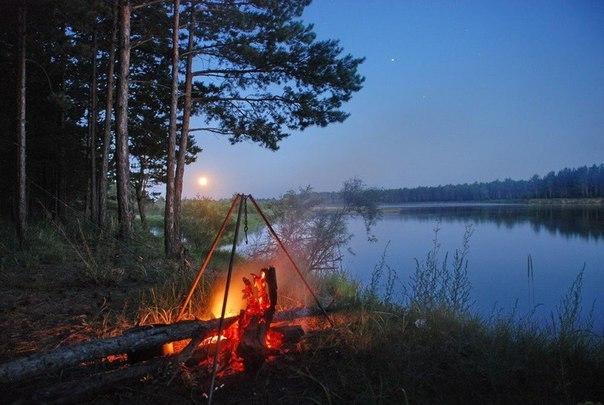 на рекой березки елки дым рыбацкого костра