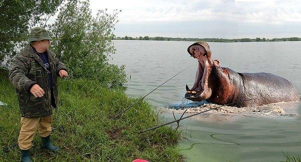 про рыбалку в июле